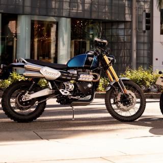 Nouveaux Triumph Scrambler 1200 XE & XC